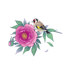 hand drawn goldfinch sitting on peony branch vector image