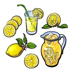 Lemonade with lemon in a transparent jug vector
