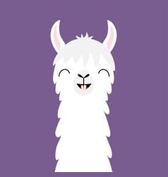 Llama alpaca animal face neck funny teeth fluffy vector
