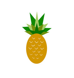 summer pineapple vector image