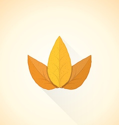 flat threesome tobacco leaf icon vector image vector image