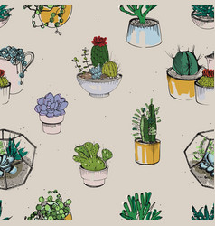 seamless with various hand drawn succulent and vector image