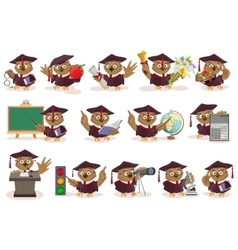 Big set owl teacher vector image