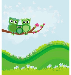 cute owls couple with baby owl sitting on a branch vector image