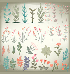 floral elements collection hand drawn design set vector image