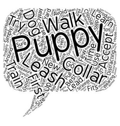 Learn the strategies to train your puppy to accept vector