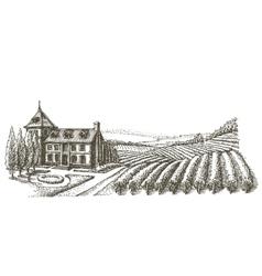 vineyard logo design template village or vector image