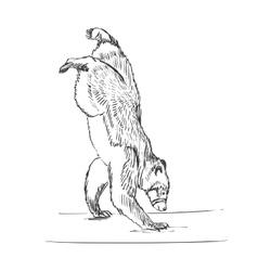 Doodle circus bear vector