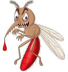 Cartoon angry mosquito isolated on white backgroun vector