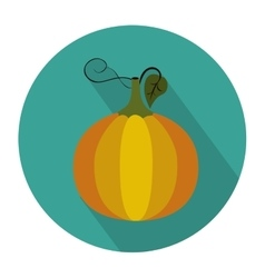 Colorful circular shape with pumpkin vegetable vector