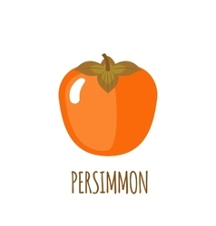 Persimmon icon in flat style on white background vector
