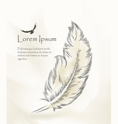 Writing feather paint with flying birds vector