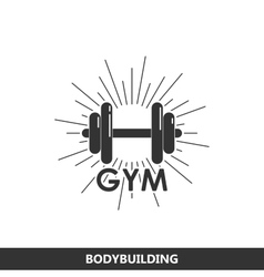 a dumbbell with burst light rays vector image