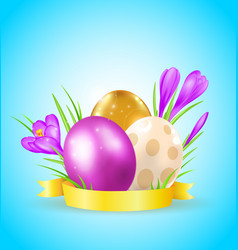 eggs and violet crocuses vector image