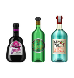 Alcohol drinks in a bottle with different vintage vector