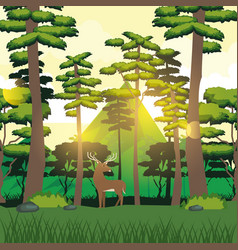 colorful background of forest and mountain vector image vector image