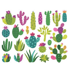 cute cactus and succulent vector image