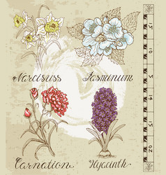 Design set with hand drawn flowers vector