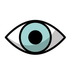 Human eye view isolated icon vector