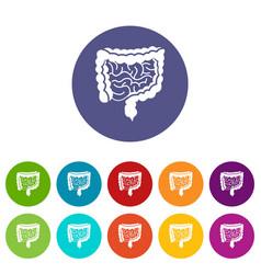 Intestines set icons vector