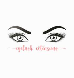 womans sexy makeup look eyes eyelashes vector image