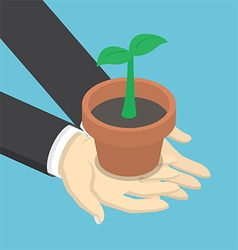 Isometric businessman holding sprout vector image