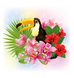 Tropical flowers and a toucan vector image