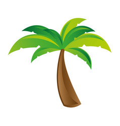 White background with palm tree vector