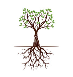 color shape of tree with roots vector image