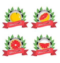 For ripe fruit citrus grapefruit vector
