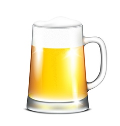 Mug of beer vector
