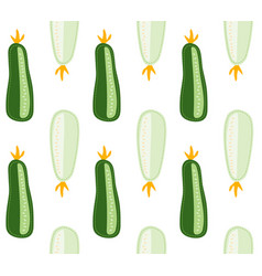 Zucchini and courgette pattern marrow vegetable vector
