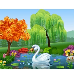 Cute swan floats on mountain river vector image vector image