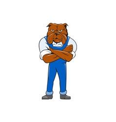 Bulldog Standing Arms Crossed Cartoon vector image vector image