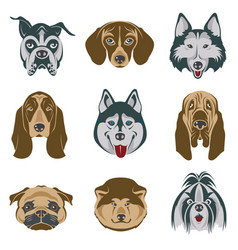 dog heads set vector image