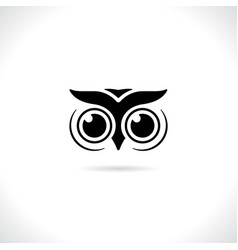 an owl face design on white background animal vector image