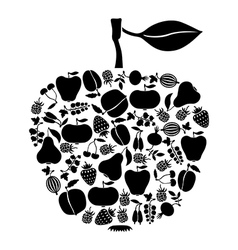 Apple on fruits black vector