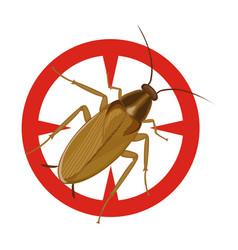 Cockroach iconcartoon icon isolated vector