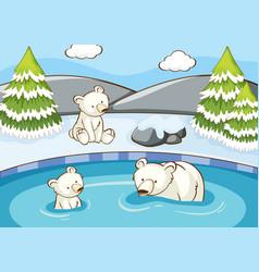 scene with polar bears in pond vector image