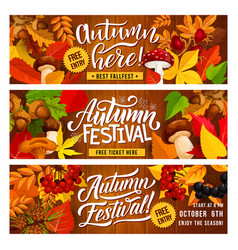 Autumn harvest festival invitation banner design vector