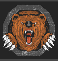 bear grizzly angry head artwork vector image