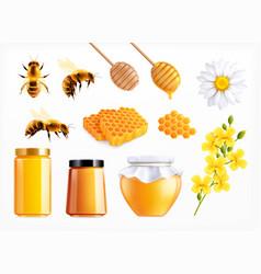 Honey realistic icon set vector