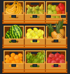 showcase or counter at organic food market vector image