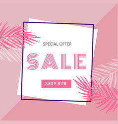 special offer sale shop now square frame pink back vector image