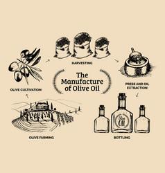 Vintage olive oil bottle hand vector