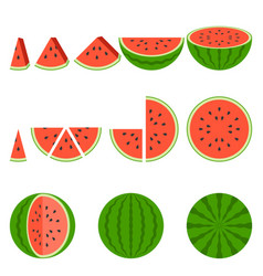 Whole and sliced of watermelon vector
