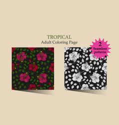 tropic vector image vector image