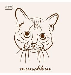 munchkin vector image vector image