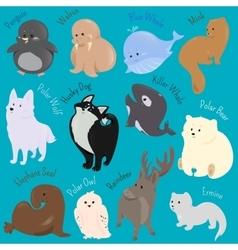 Set of cute cartoon winter north animal icon vector image