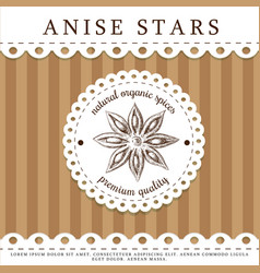 Anise stars packaging design hand drawn aniseed vector